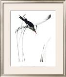 Perched Bird Posters by Aurore De La Morinerie
