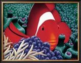 Clown Fish Poster by Mark Mackay