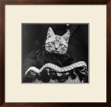French Tabby Cat Prints by Mesh Gabriella