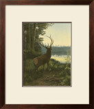 Elk Art by Oliver Kemp