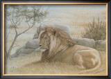 Golden Lion Art by Dennis Curry