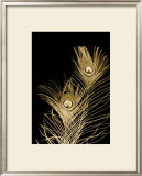 Plumes d'Or II Print by Jason Johnson