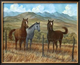 Appaloosa I Art by Ron Jenkins