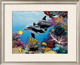 Treasures Framed Giclee Print by Mark Mackay