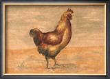 Hen Prints by Banafshe Schippel