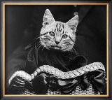 French Tabby Cat Print by Mesh Gabriella