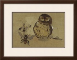 Owl And Bee Limited Edition Framed Print by Joseph Crawhall