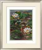 Frog in Lily Pond Poster by  Durgin