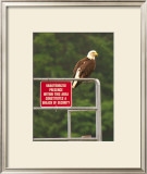 America Under Eagle Watch Framed Giclee Print by Charles Glover