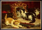 Kittens, 1893 Prints by Charles Van Den Eycken