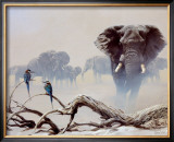 Away from the Herd Print by Spencer Hodge