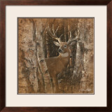 Birchwood Buck Prints by Collin Bogle