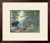 Bears' Campsite Prints by Anita Phillips