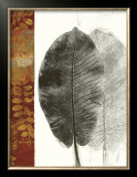 Leaf Study I Prints by Kerry Vander Meer