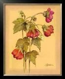 Flores Colgantes IV Prints by L. Romero