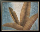 Palm Fronds II Prints by Jordan Gray