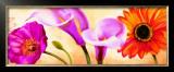 Danse de Fleurs II Print by Pierre Viollet