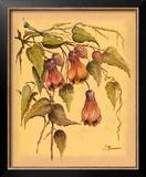 Flores Colgantes III Posters by L. Romero