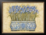 Blue Irises Prints by Eva Misa
