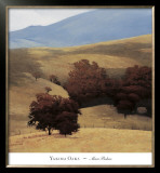 Yakima Oaks Posters by Marc Bohne