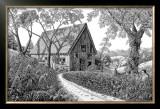 Field OF Dreams Prints by Tom Masse