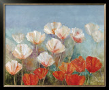 Blushing Poppies Prints by  Angellini