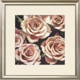 Roses Prints by Elizabeth Hellman