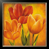 Orange Tulips I Poster by David Pedersen