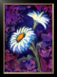 Daisy Framed Giclee Print by Marcella Rose