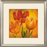 Orange Tulips I Posters by David Pedersen