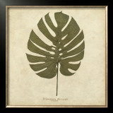 Windowleaf Prints by Becky Davis