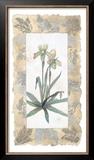 Elegant Orchid Art by George Caso