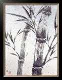 Cool Bamboo II Prints by Katsumi Sugita