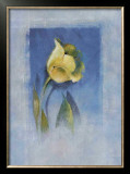 Yellow Tulip Prints by Matilda Ellison