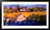 Vineyard Afternoon Posters by Philip Craig