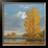Ginkgo Reflections Print by Jill Schultz McGannon