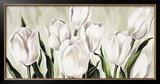Tulipani Bianchi Art by L. Corrandini