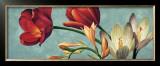 Luce e Colore I Poster by Eva Barberini