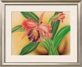Pink Cattleya Orchid Prints by Moki Hana