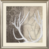 Deer Lodge I Posters by Tandi Venter