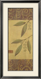 Eucalyptus Leaves II Poster by Gayle Bighouse