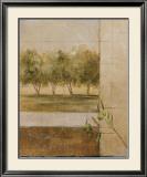Olive Groves II Art by Cheryl Martin