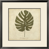 Windowleaf Print by Becky Davis