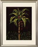 Tropical Paradise II Prints by Samuel Blanco