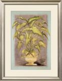 Jarrones Plantas I Posters by L. Romero
