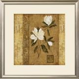 Magnolia Stripe II Posters by Gene Ouimette