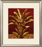 Traveler's Palm Prints by Rodolfo Jimenez