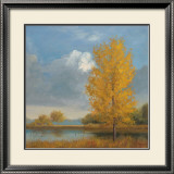 Ginkgo Reflections Prints by Jill Schultz McGannon