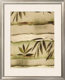 Vizcaya Ferns I Posters by Muriel Verger
