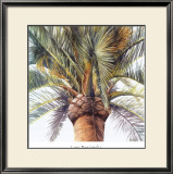 Roma Palm Art by Lois Brezinski